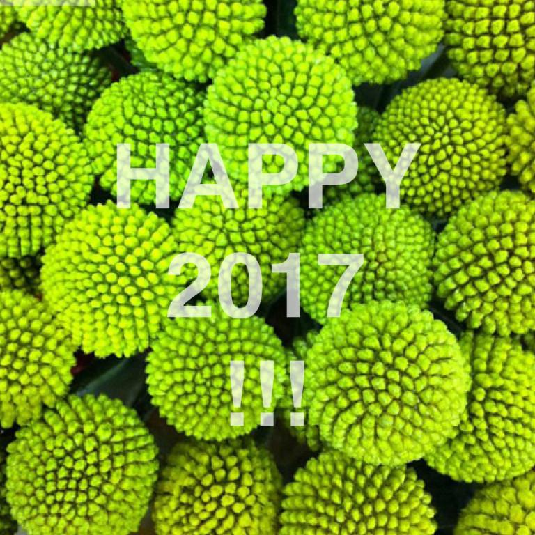 happy2017_7